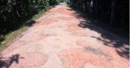 রামগঞ্জে ভাঙা সড়ক, দুর্ভোগে চার লাখ মানুষ