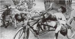 এখনও গণহত্যার ক্ষমা চায়নি পাকিস্তান