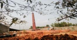 দিনাজপুরে ইটভাটার ধোঁয়ায় নষ্ট কয়েকশ একর ফসল