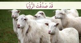 ইবরাহিম (আ.)-এর কুরবানির পশুর নাম-আকৃতি যেমন ছিল