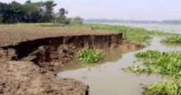 গোপালগঞ্জে মধুমতী নদীতে তীব্র ভাঙন